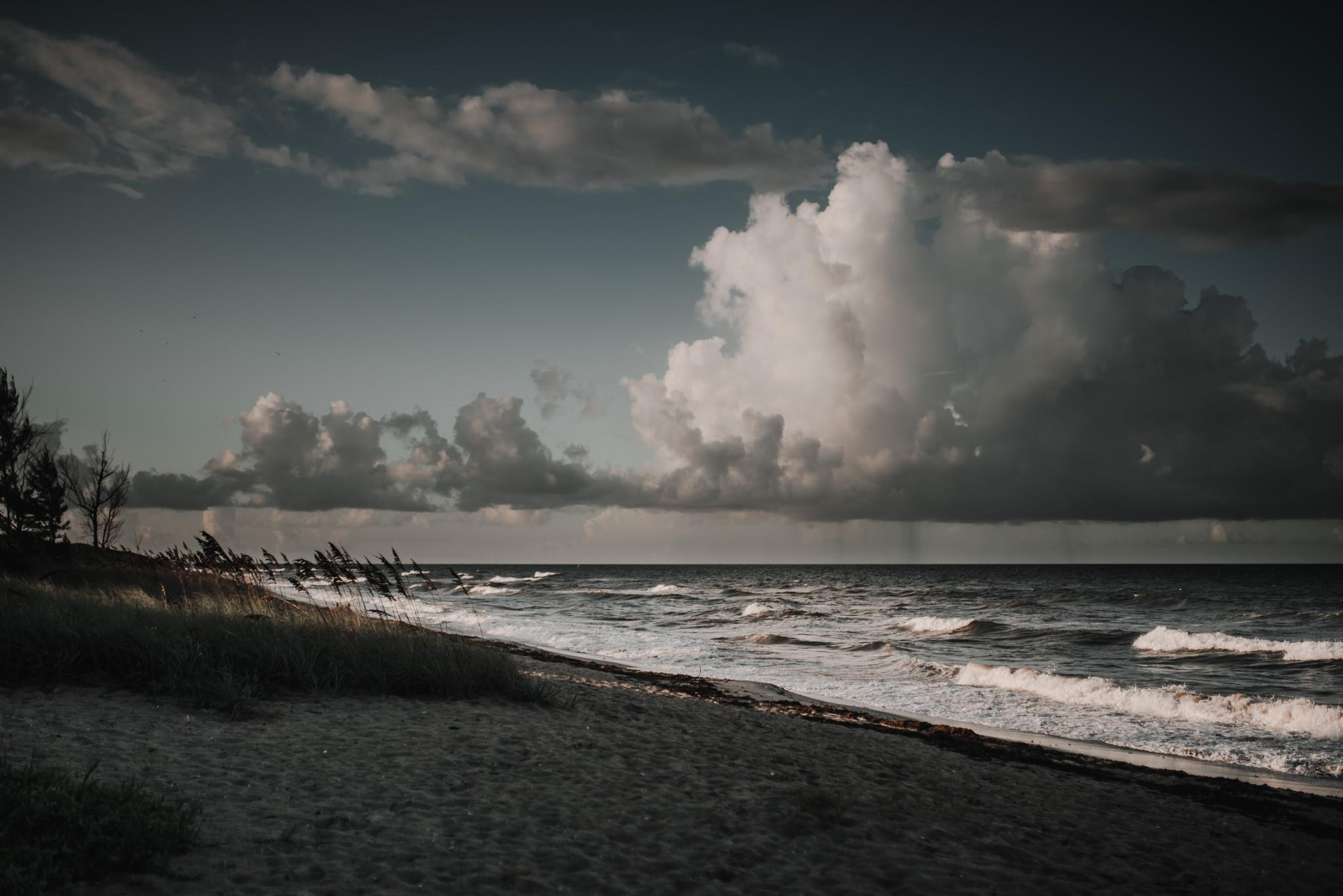 twyla jones photography - treasure coast florida - josh and everly--18.jpg
