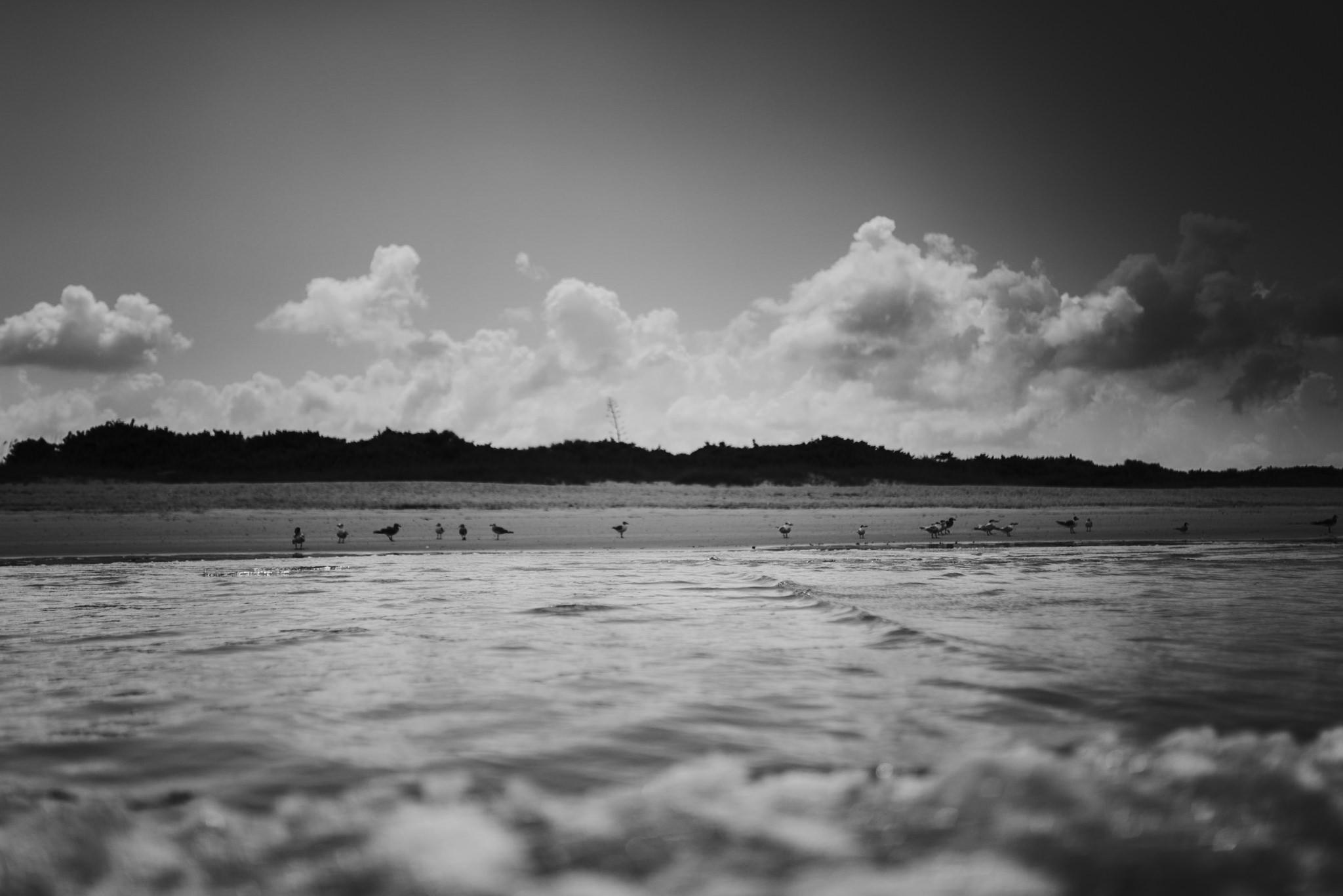twyla jones photography - treasure coast florida - stormy beach boy playing in sand--2.jpg