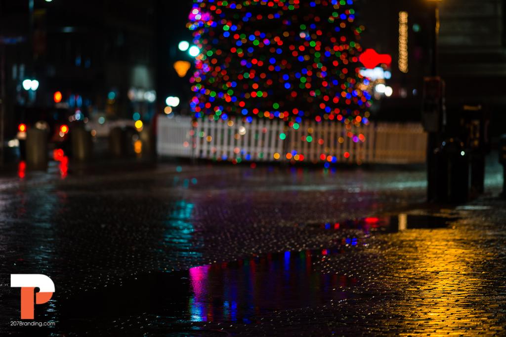 christmas-tree-2016-portland-maine-62.jpg