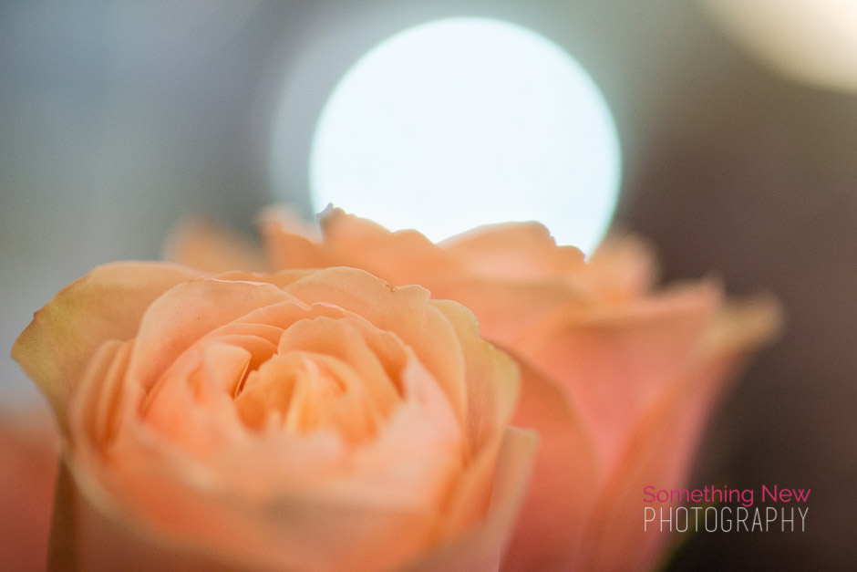 maineweddingphotography_sawyer_14.jpg