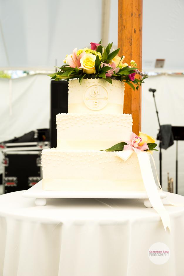 cake-elizabeth-wedding-photographer-in-maine6.jpg