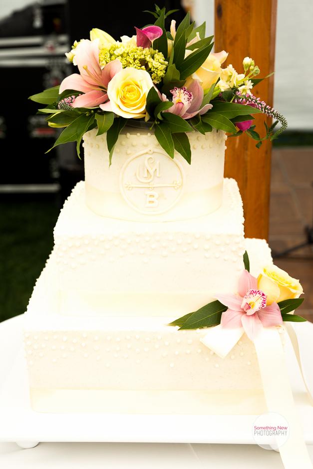 cake-elizabeth-wedding-photographer-in-maine7.jpg