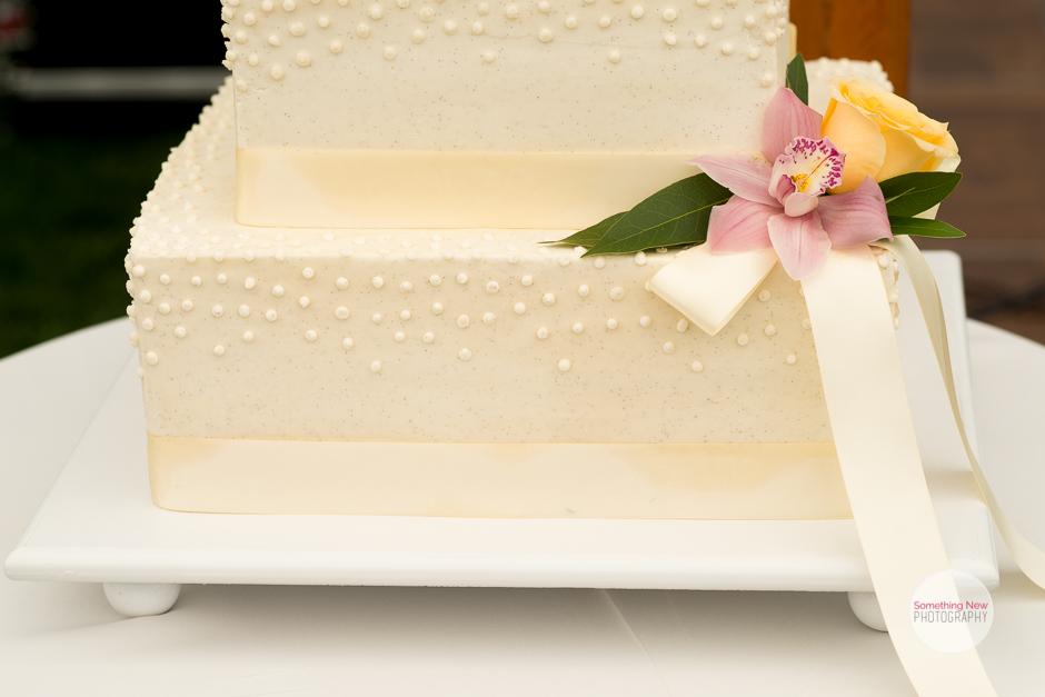 cake-elizabeth-wedding-photographer-in-maine9.jpg