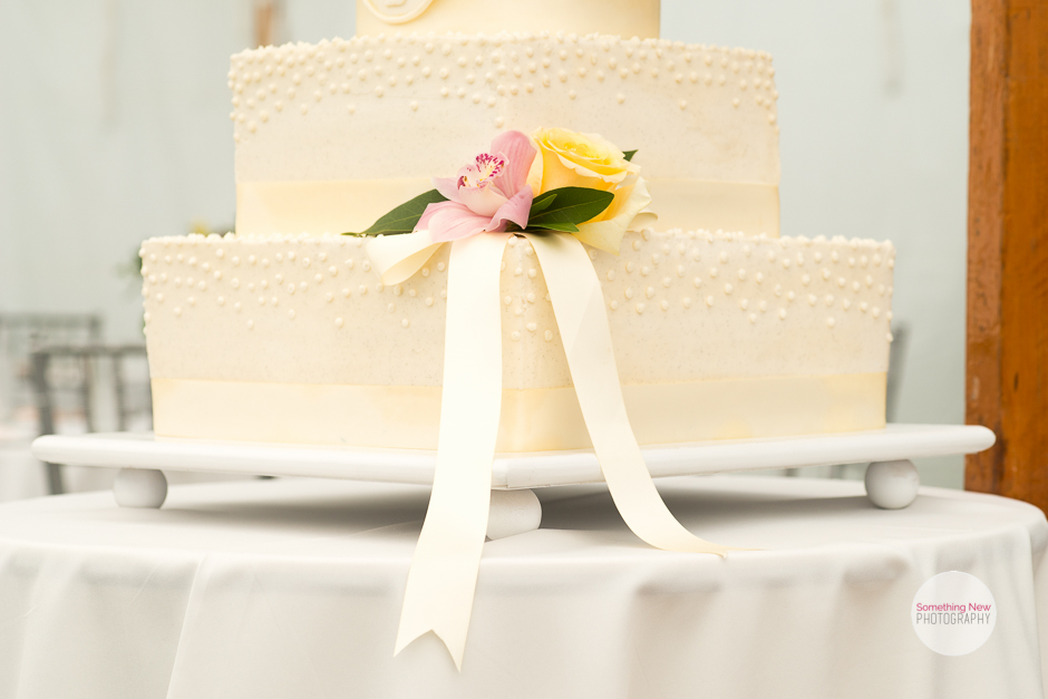 cake-elizabeth-wedding-photographer-in-maine20.jpg