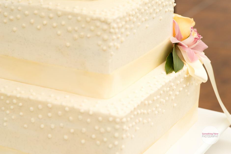 cake-elizabeth-wedding-photographer-in-maine23.jpg