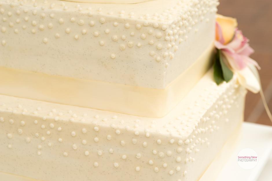 cake-elizabeth-wedding-photographer-in-maine26.jpg
