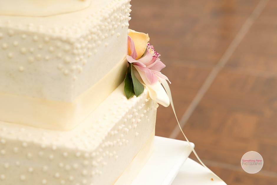 cake-elizabeth-wedding-photographer-in-maine27.jpg
