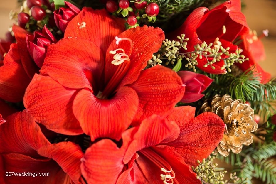 portland-maine-wedding-photographer-sawyer-christmas-9.jpg