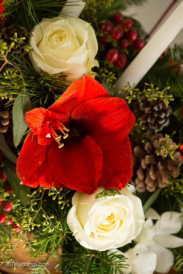portland-maine-wedding-photographer-sawyer-christmas-27.jpg