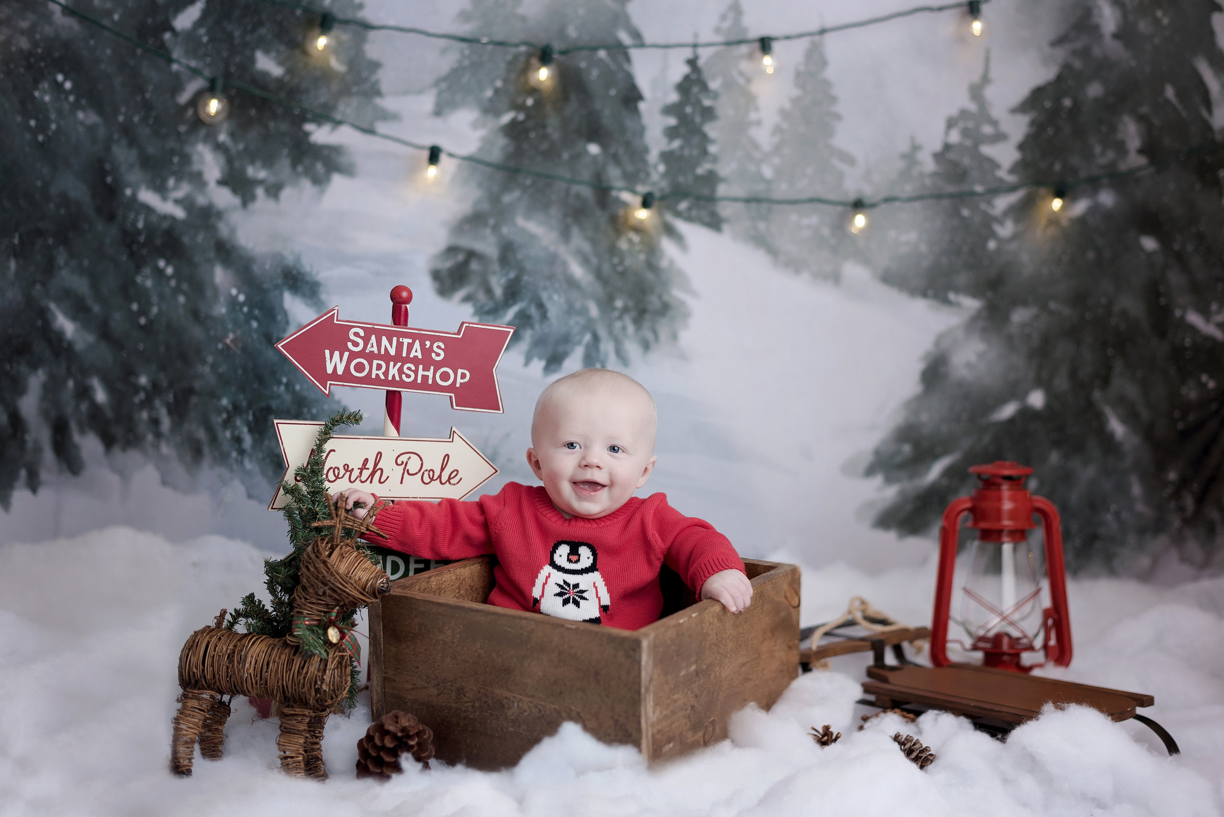 Holiday Mini Session (41 of 42).JPG