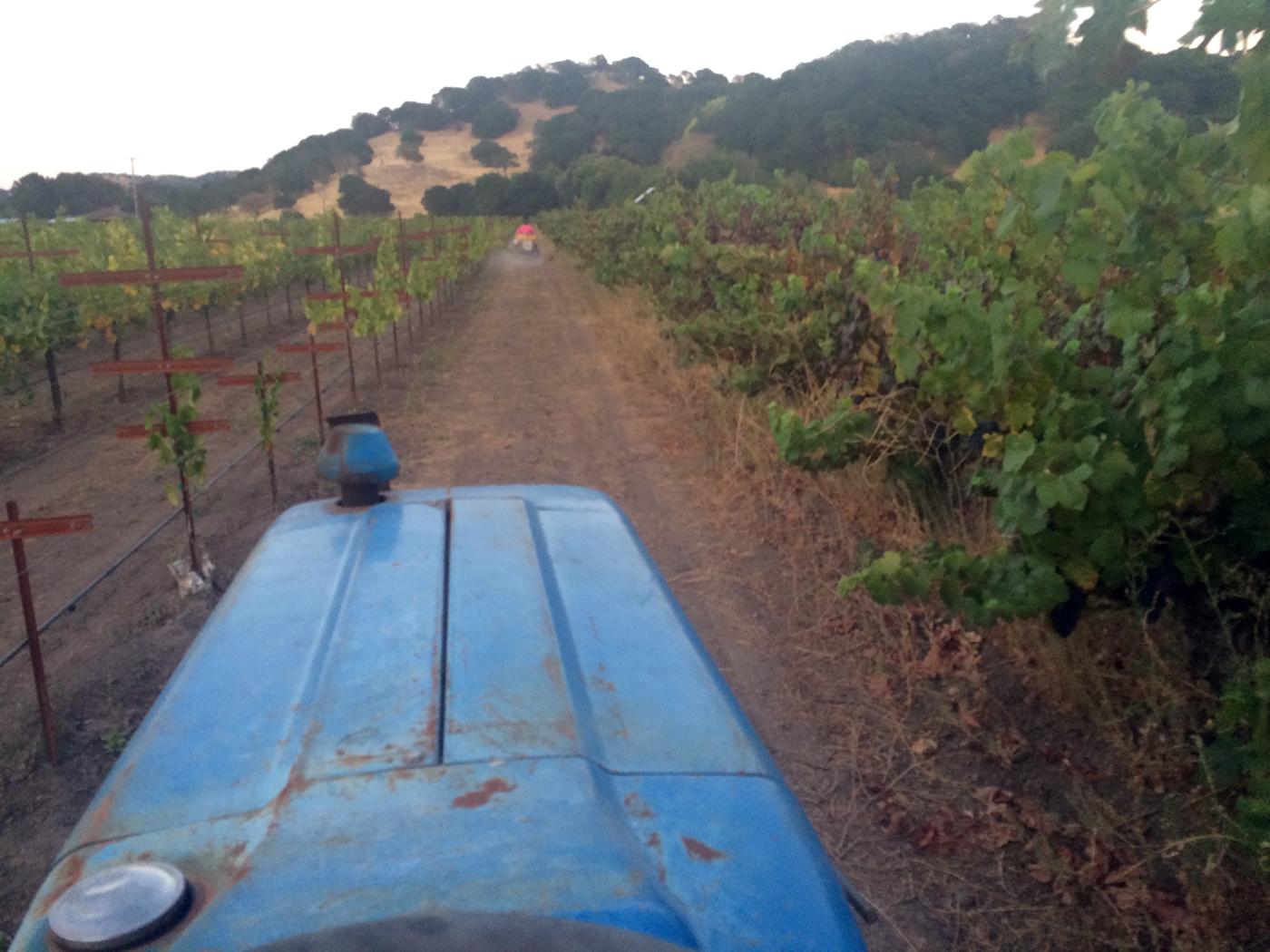 Riding Tractors Around John Frei's Vineyard