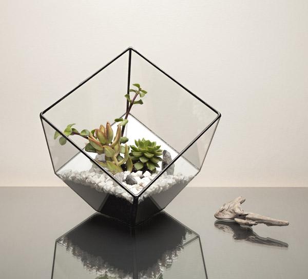 The Urban Botanist Aztec Terrerium, From £54.95 at GROW London.jpg