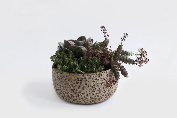 meteor_planter_by_pilar_wiley_the_garden_edit_design_hunter.jpg