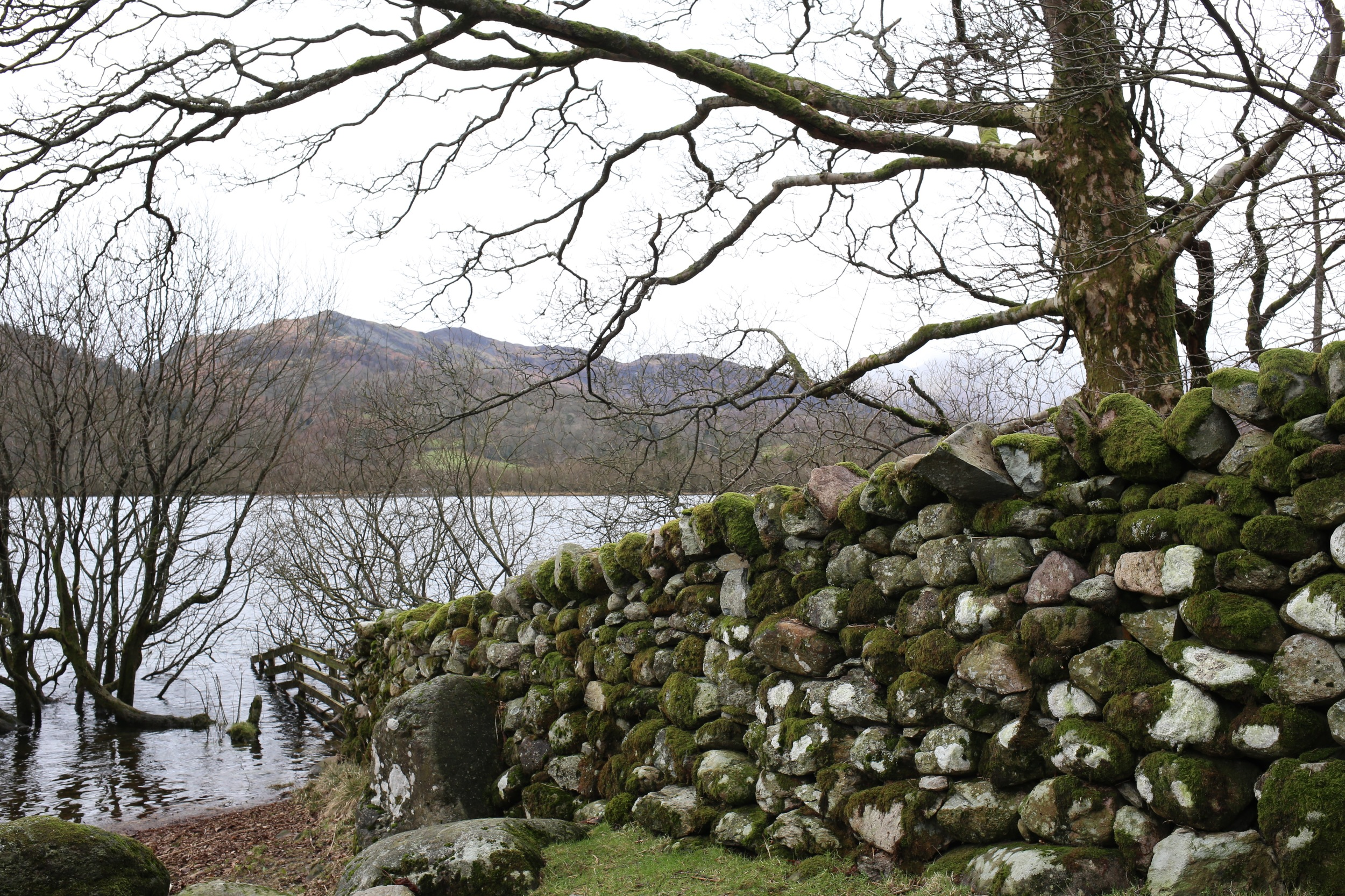 Mossy stone wall - Elterwater, Cumbria | Design Hunter