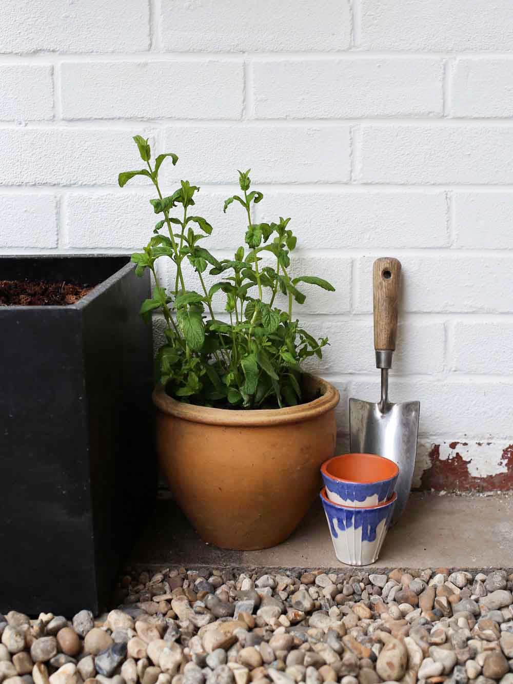 Plant pots | Design Hunter