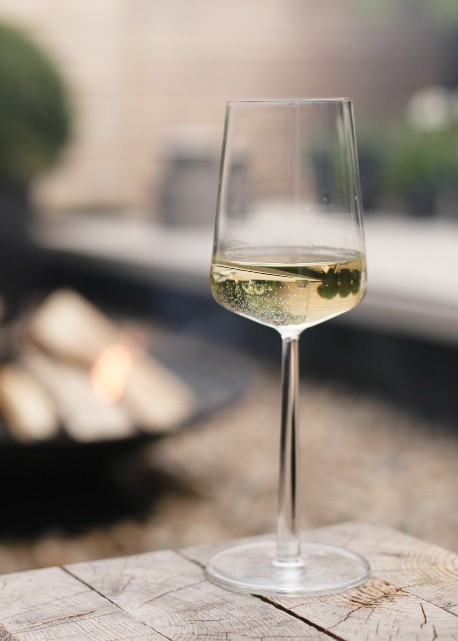 Glass of white wine and firebowl | Design Hunter