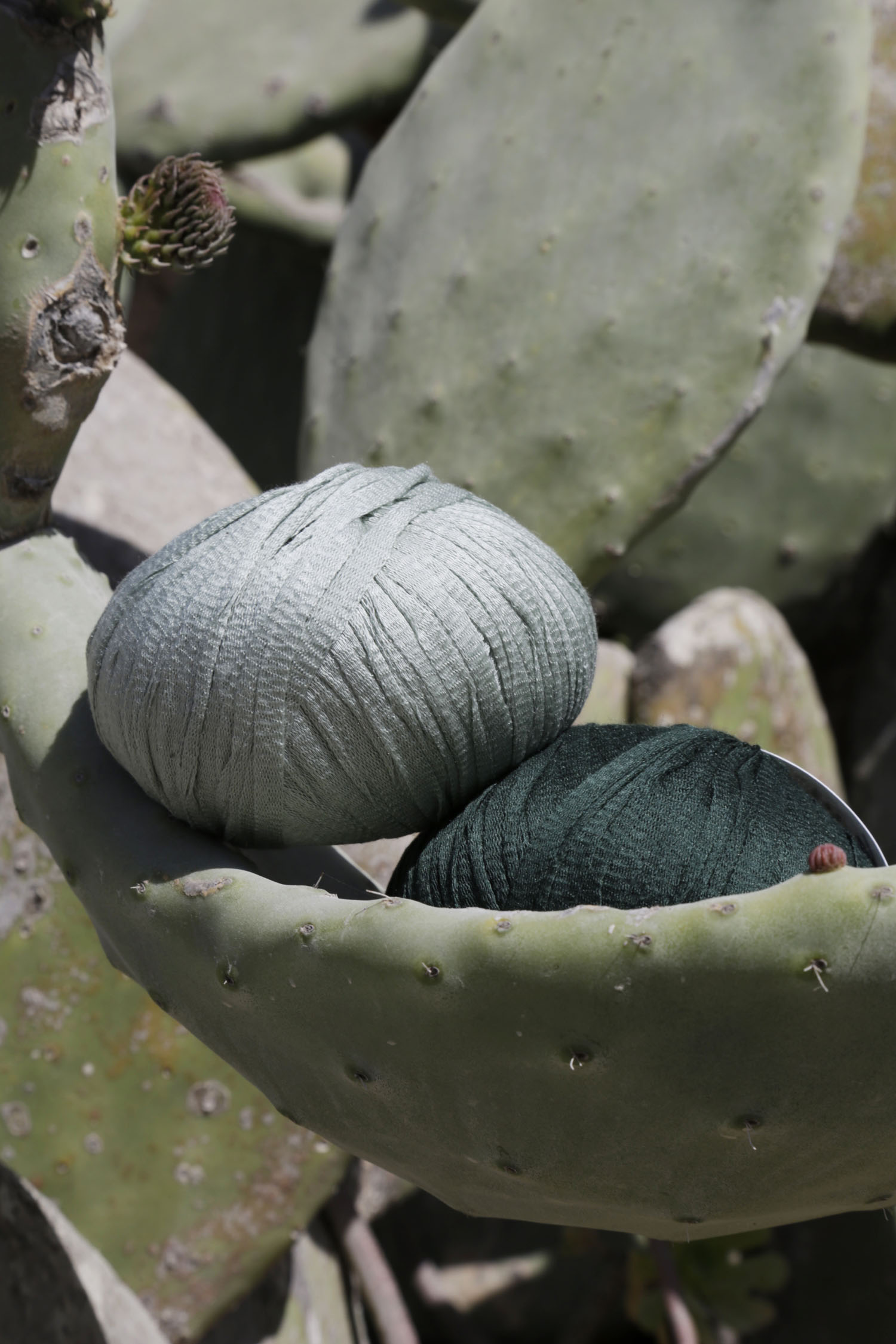 Tina Tape yarn by Wool and the Gang | Design  Hunter
