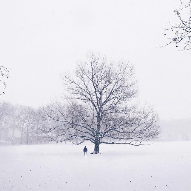 Photo Jan 27, 1 59 31 PM.jpg