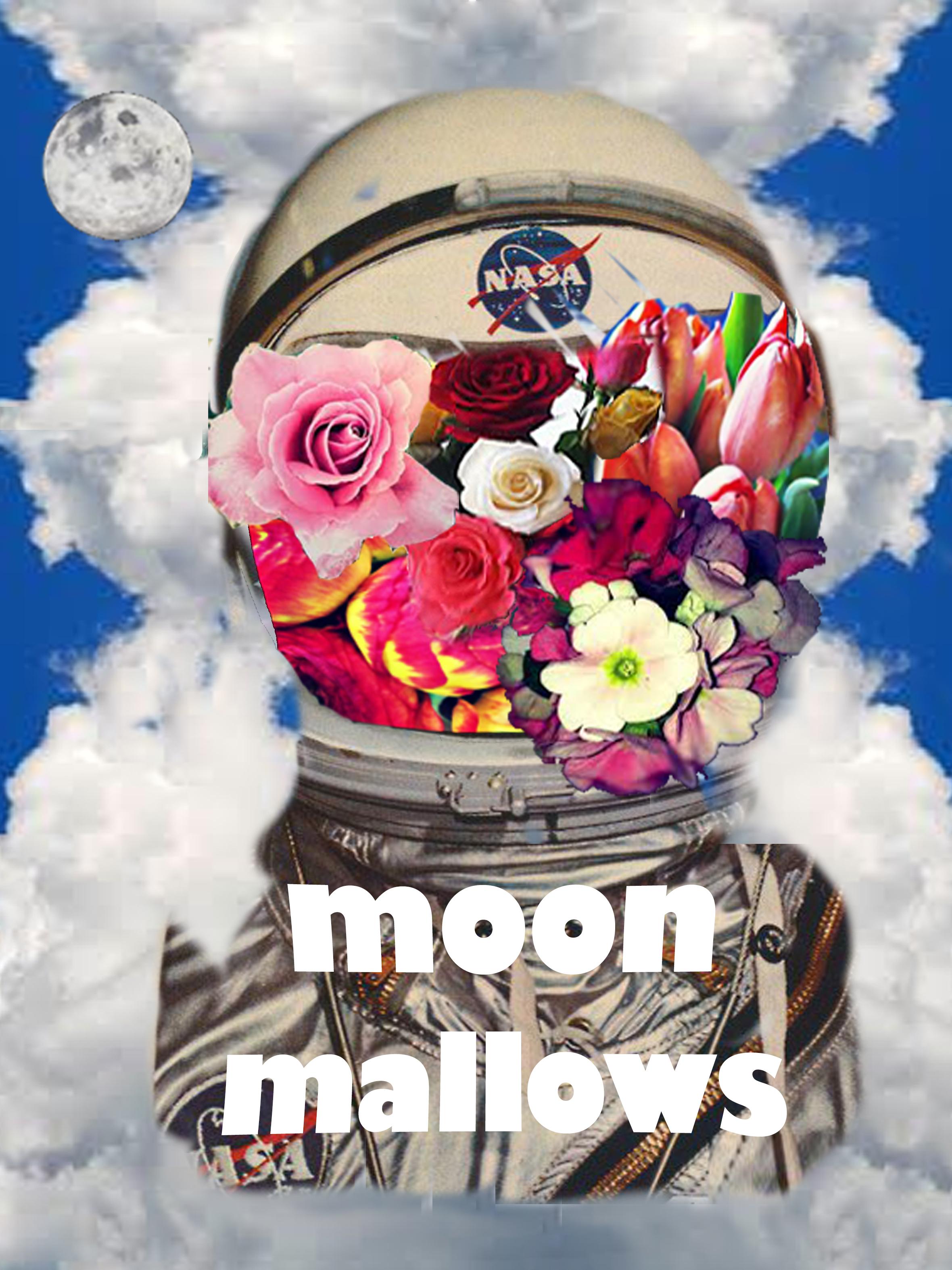 moonmallowsclouds.jpg