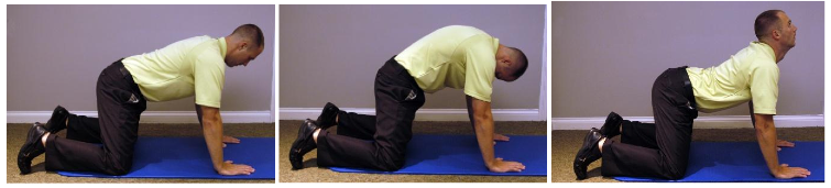 Figure 4 position to start. Tuck chin and round hips. Look up and draw stomach down, slight arch to low back. 25 times