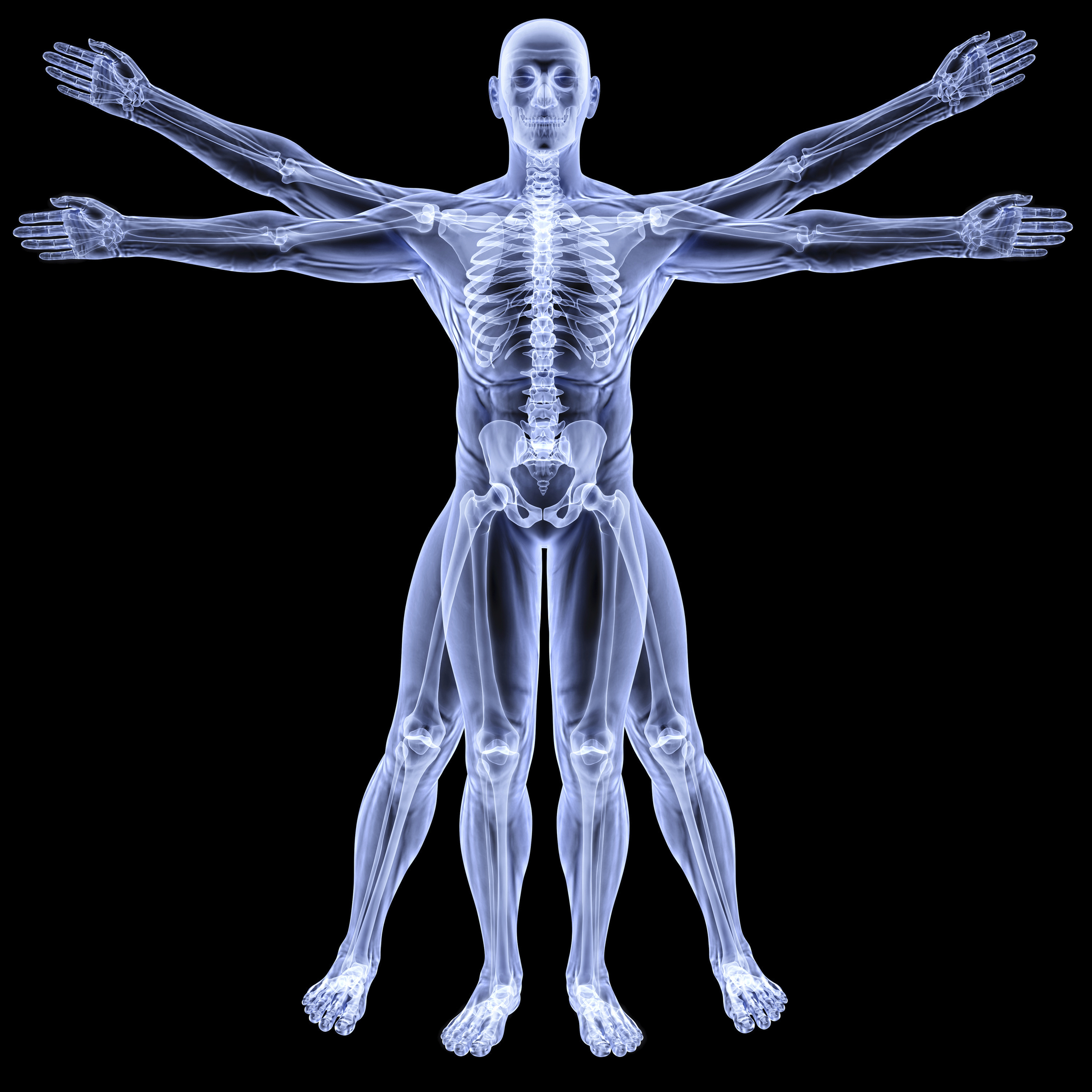 Alignment, structure and function are assessed with an in-office  digital xray