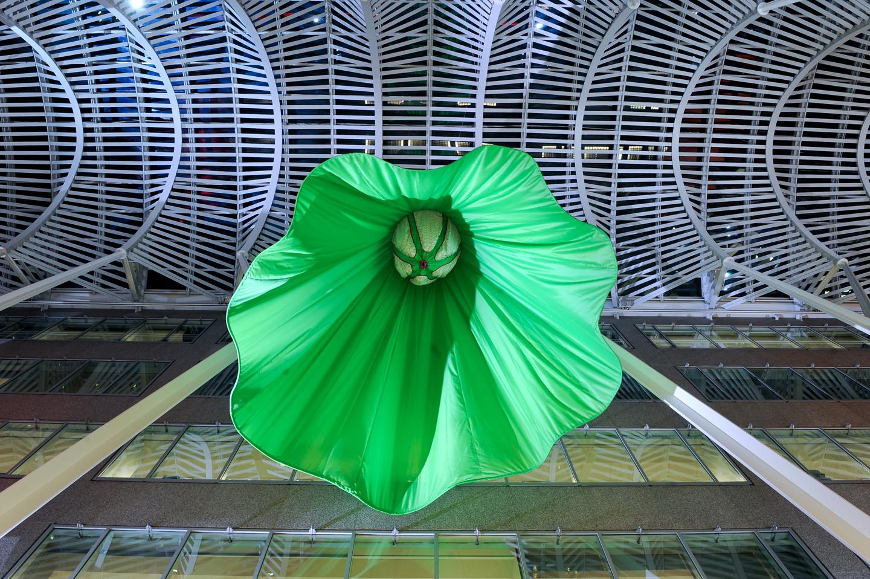 Soft Spin green interior web.jpg