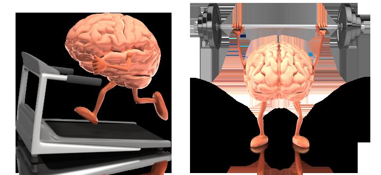 brain-treadmill-barbell-gym.png
