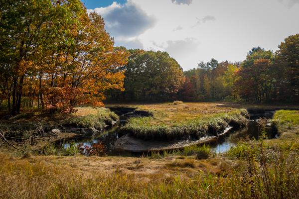 Estuaries along the Southern Maine coast
