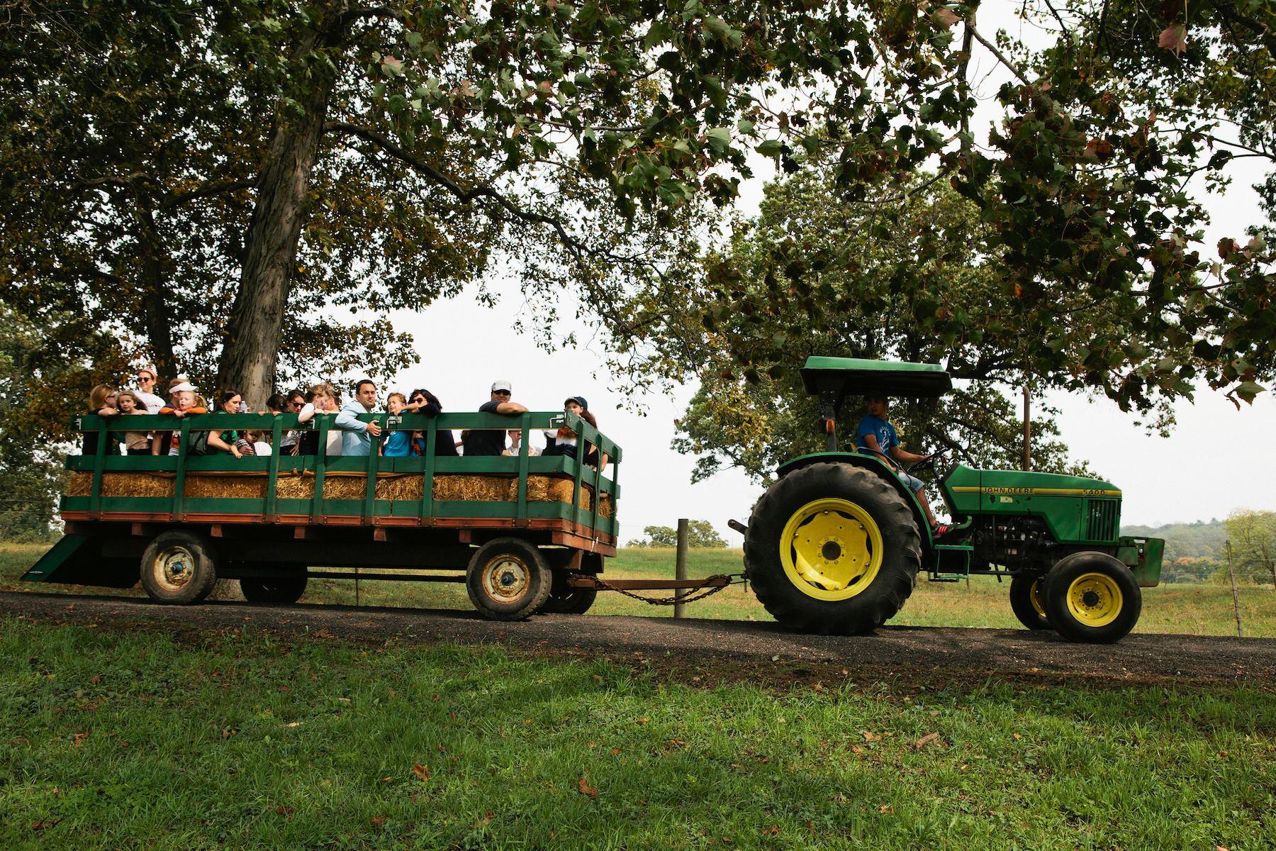Stone Barns Center Harvest Fest