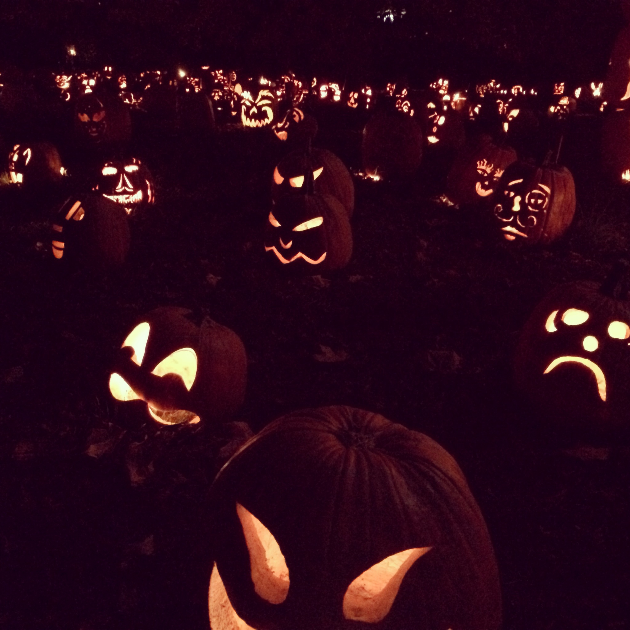 the  Great Jack O'Lantern Blaze  in the Hudson Valley
