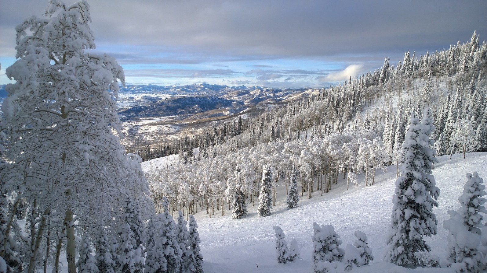 The slopes of Steamboat Springs, Colorado