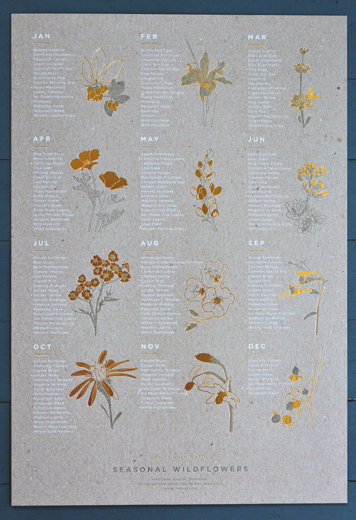 Seasonal Wildflowers Chart by Young America Creative