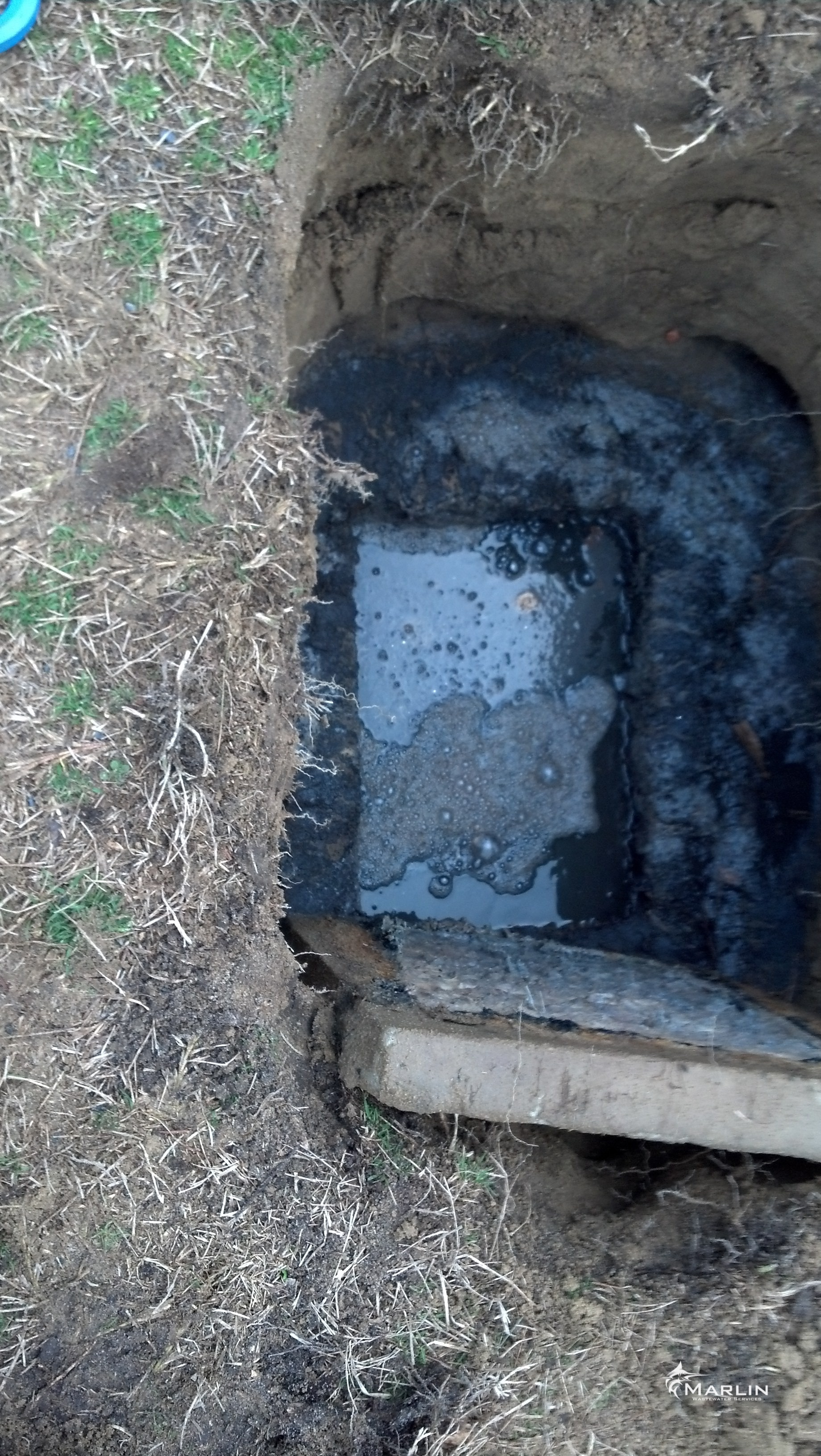 Point of Sale Inspections 4 — MARLIN - Septic Tank Cleaning