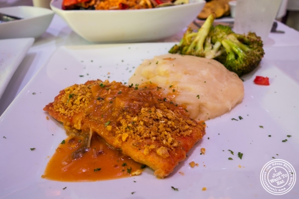 plantain crusted red snapper at Don Coqui, Puerto Rican restaurant in Astoria, NY