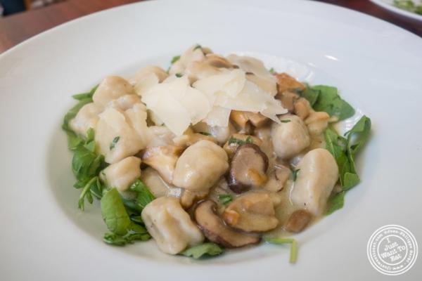 Gnocchi atTorino, Italian Restaurant in New York, NY