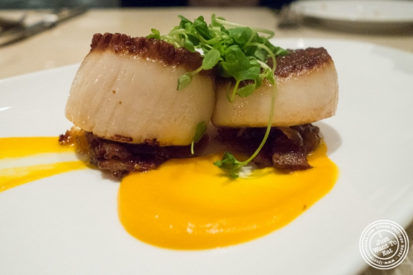 Diver Scallops at  Maze by Gordon Ramsay in New York, NY