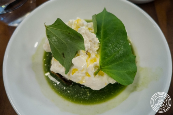 Burrata with salsa verde at  Estela in New York, NY