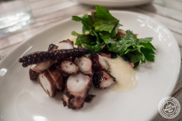 Grilled octopus at Telepan Local in TriBeCa, New York, NY