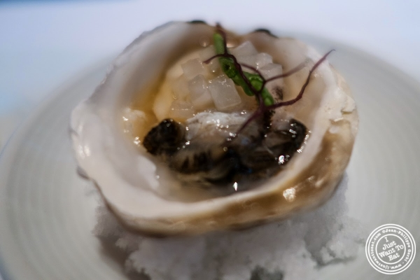 oyster with sea bean at Le Bernardin in New York, NY