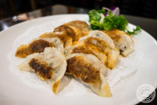 Pork dumplings atSeoul Garden in New York, NY