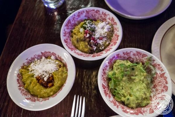 Guacamole sampler atAñejo in Tribeca, NYC, New York