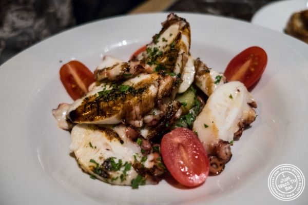 Insalata di polpo atPetrarca Cucina e Vino, Italian restaurant in Tribeca, NYC, New York