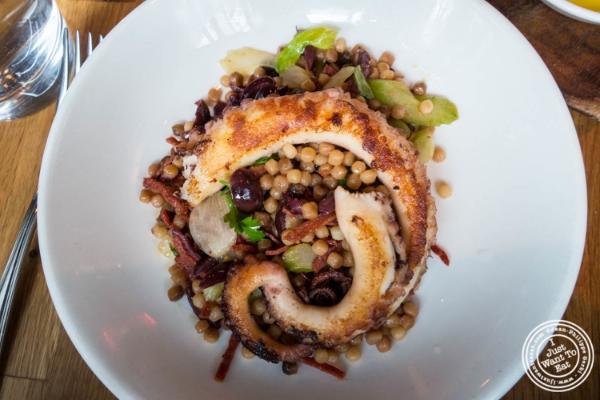 Charred octopus atL'Apicio, Italian-inspired restaurant in Greenwich Village
