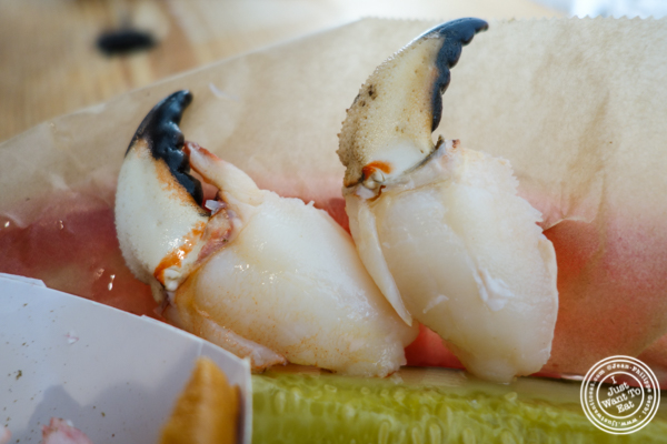 Crab claws atLuke's Lobster in Hoboken, NJ