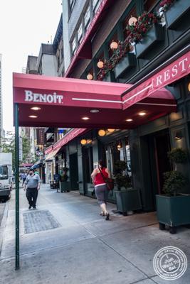 Benoit in NYC, New York