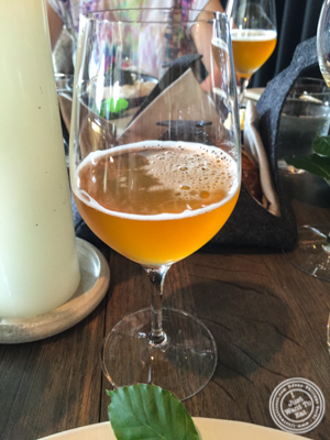 Apple and pine juice at Noma in Copenhagen, Denmark