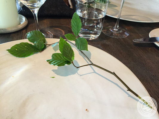 Natural fork at Noma in Copenhagen, Denmark