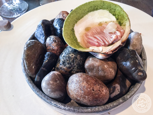 Mahogany clam at Noma in Copenhagen, Denmark
