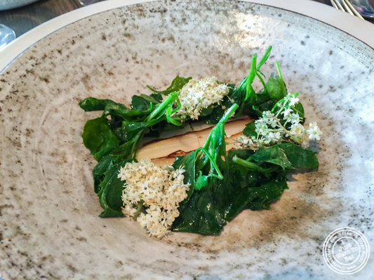 White asparagus, goosefoot and barley at Noma in Copenhagen, Denmark