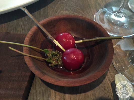 Cherries at Noma in Copenhagen, Denmark